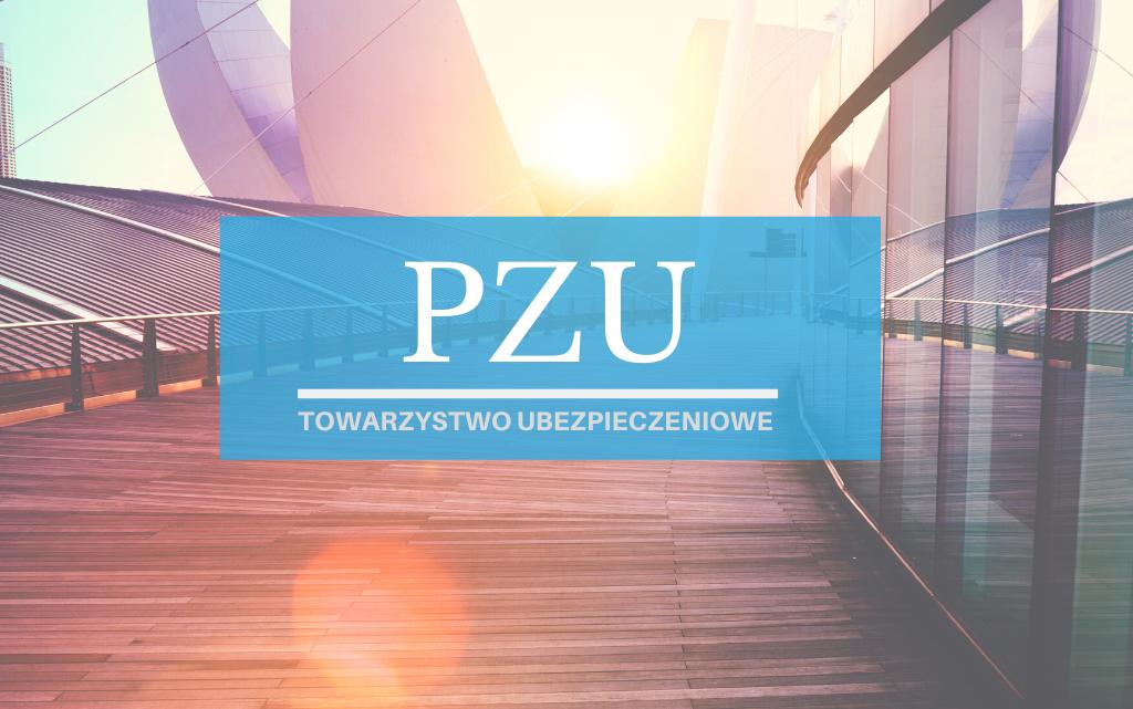 PZU – Historia, Ubezpieczenia OC/AC